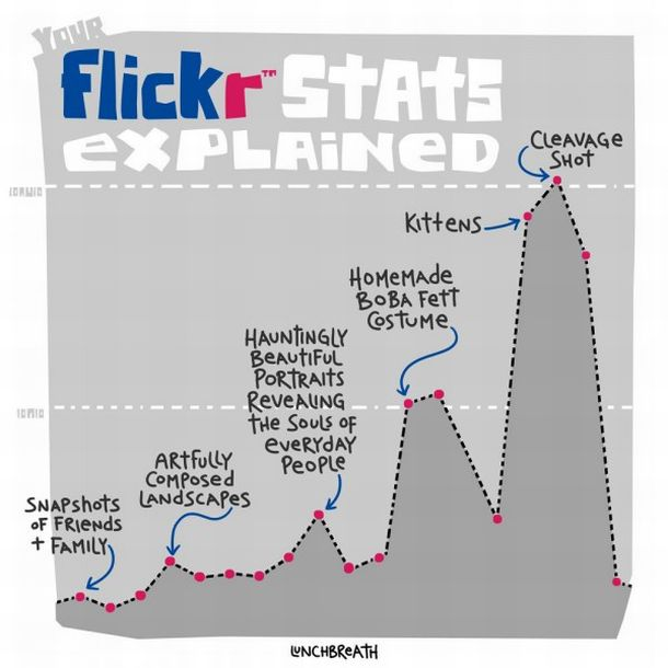 How much do you know about flickr stats?