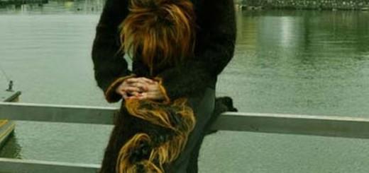 Human Hair Dress