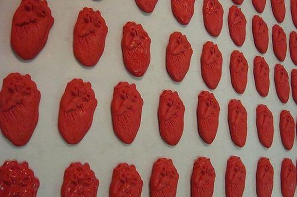 human heart art. a real human heart with